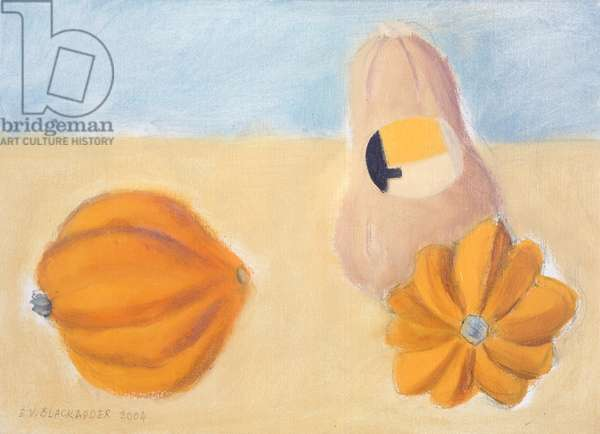 Three Squashes, 2004 (oil on canvas)