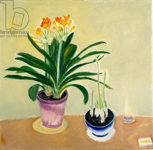 Clivia and Spring Bulbs (oil on canvas)