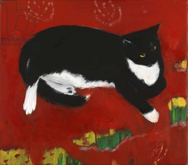 Louis on a Silk Cushion (oil on canvas)