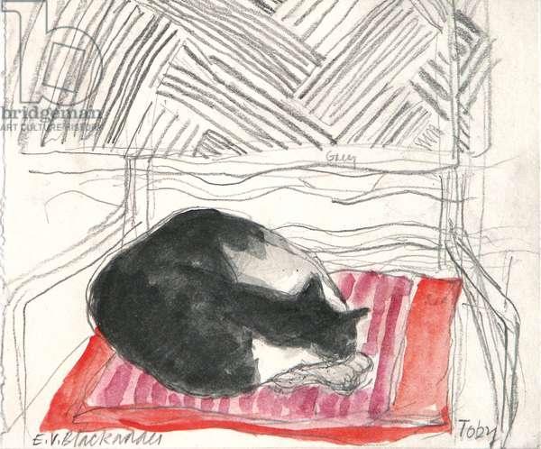 Toby Sleeping on a Silk Cushion (pencil & w/c on paper)