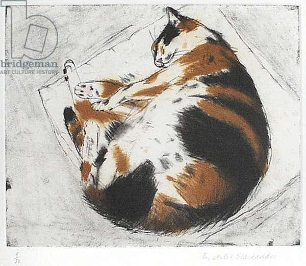 Coco Sleeping (etching)