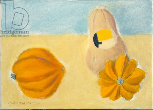 Three Squashes (oil on canvas)