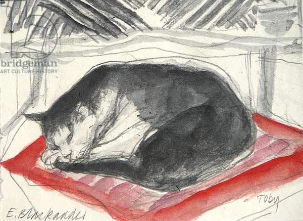 Toby Sleeping (pencil & w/c on paper)