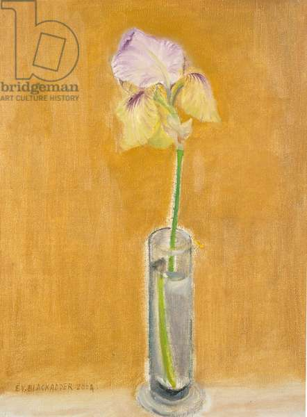 Iris in a Glass Vase (oil on canvas)