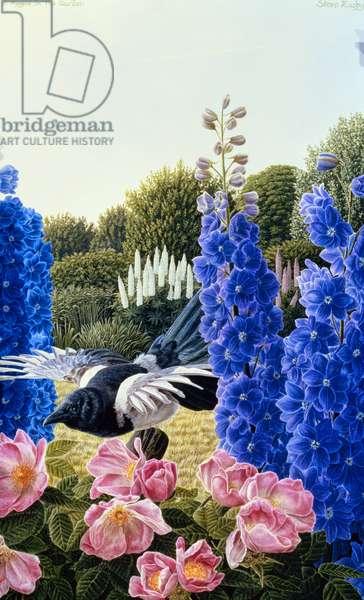 Magpie in a Garden (oil on canvas)