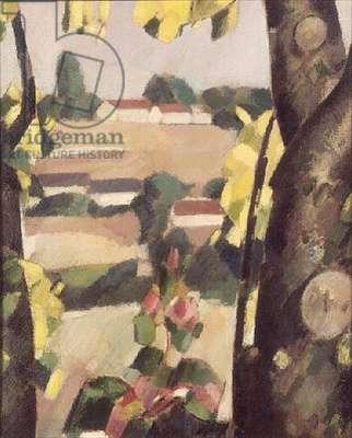 Lime Trees, Becheron