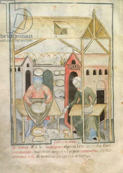 Nouv Acq Lat 1673 fol.58v Preparation of cheese, from 'Tacuinum Sanitatis', c.1390-1400 (vellum)