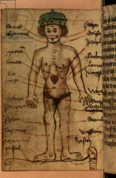 Zodiac diagram showing the position of the heart, from a collection of prayers and astrological figures (vellum)
