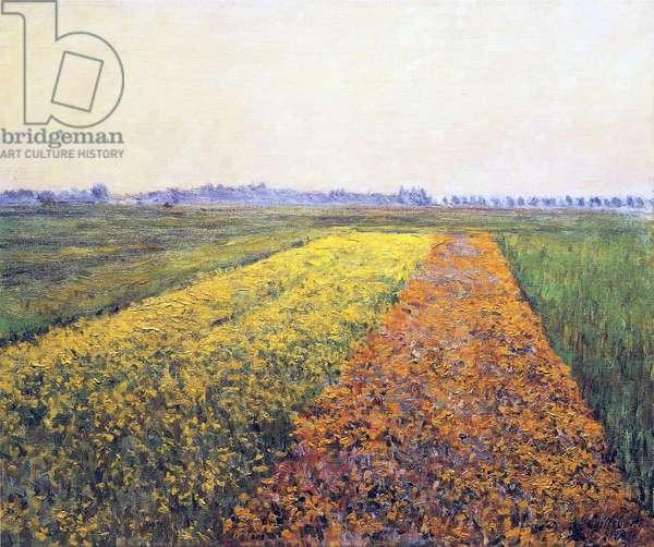 Landscape, 1848 (oil on canvas)