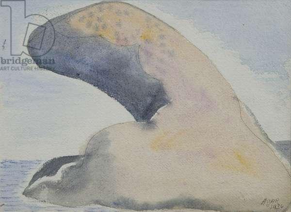 Thumb-Rock, 1936 (w/c on paper)