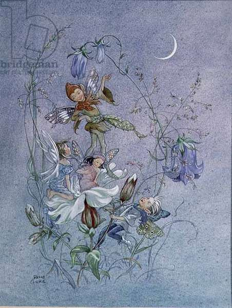 Fairies and Harebells