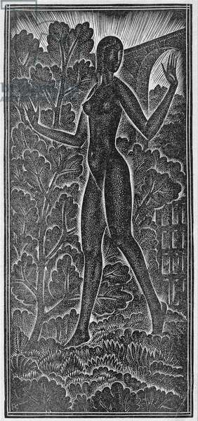 'A Garden Enclosed is My Sister' (Hortus Conclusus) illustration from 'The Song of Songs' (Canticum Canticoram Salomonis) 1929 (woodcut)