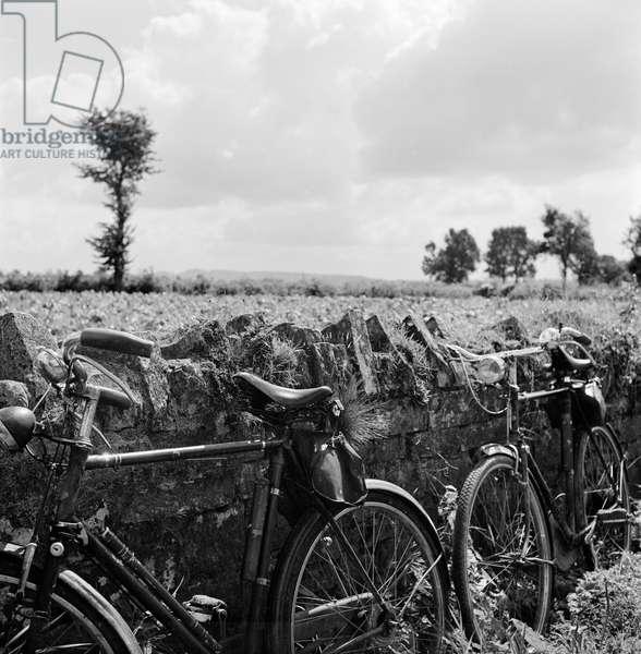 Bicycles, Somerset, 1950s (b/w photo)