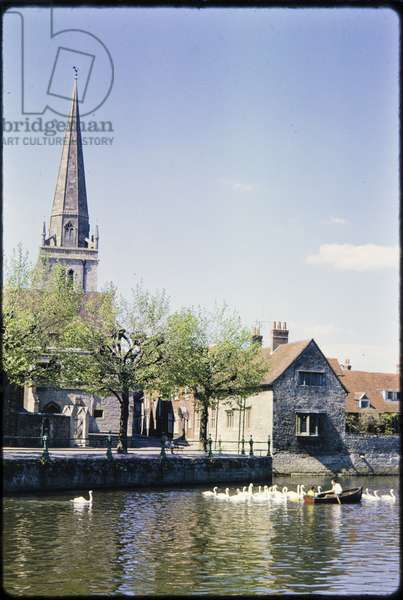 A view looking north across the River Thames from the north-western shore of Andersey Island, towards St Helen's Wharf, East St Helen Street and St Helen's Church, with a rowing boat surrounded by swans on the river (photo)