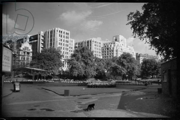 View of the riverside elevation of the Adelphi, seen from the south in the Victoria Embankment Gardens, c.1950-c.1980 (b/w photo)