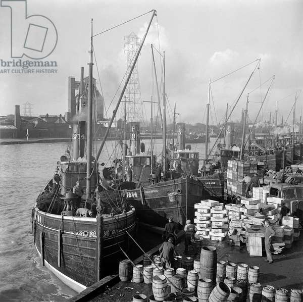 General view showing fishing boats moored at the quay, 1947 (b/w photo)