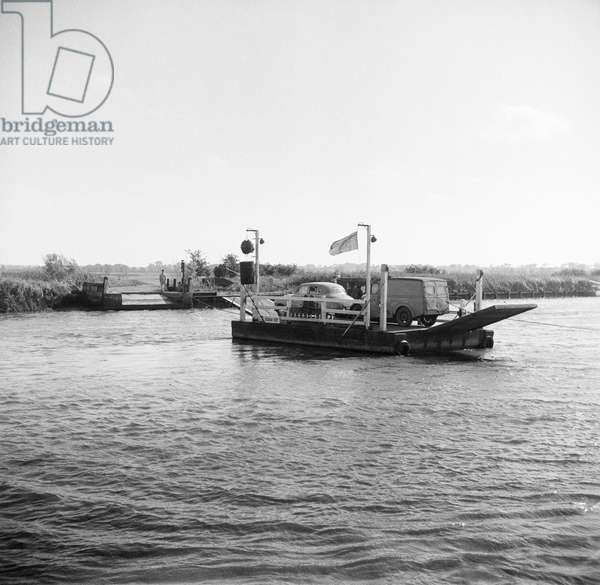Car ferry, Reedham, Norfolk, September 1954 (b/w photo)