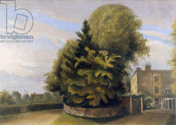 Down House from the North (oil on canvas)