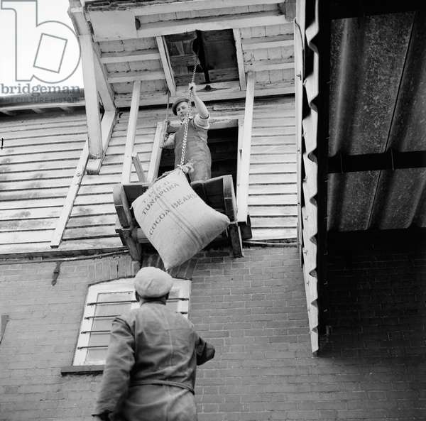 Two men lifting a sack of cocoa beans with a hoist at Elsing Mill, 1967 (b/w photo)