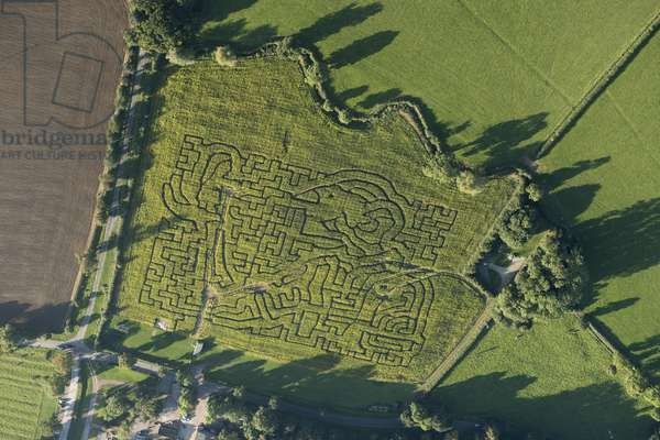 Aerial view of the BFG, Winstow Maize Maze, Leicestershire (photo)