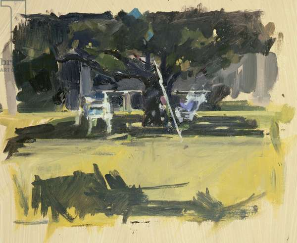 Pistachio Tree, British School at Athens (acrylic and oil on paper)