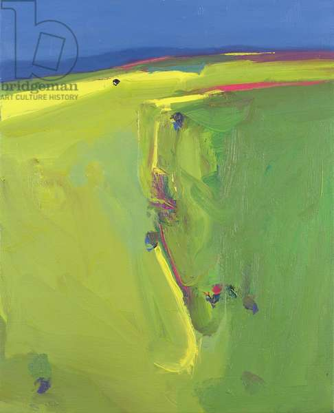 Summer Downs, 2000 (oil on canvas)