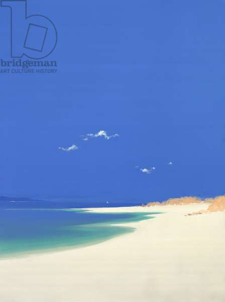 Tresco, Summer, 2001 (oil on canvas)