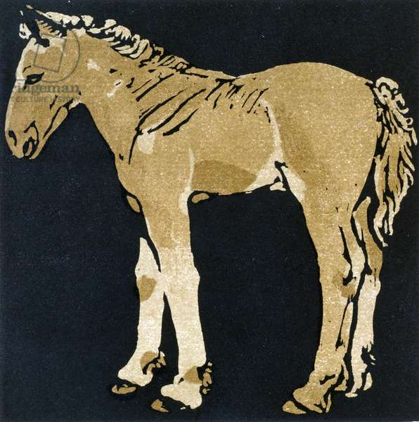 The Growing Colt, from 'The Square Book of Animals', published by William Heinemann, 1899 (hand-coloured woodcut)