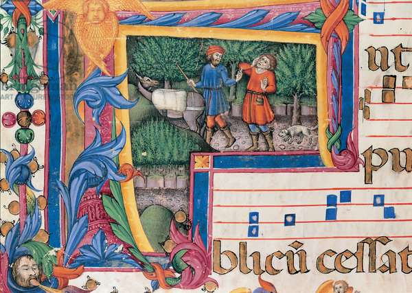 Day and night Antiphonary from the 6th Sunday after Pentecost to the Advent, (illuminated manuscript)