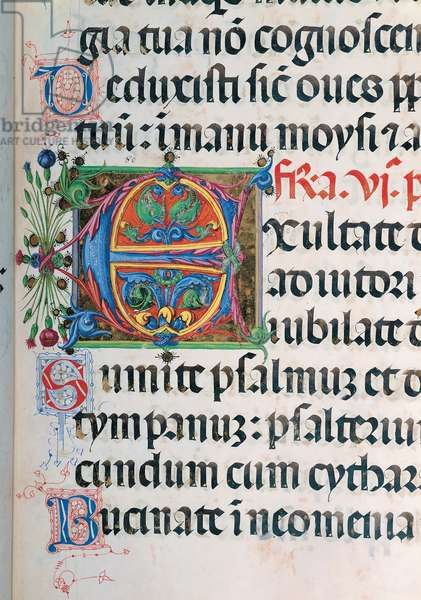Psalter with night and day holiday Hymns according to the Roman Curia tradition, (illuminated manuscript)