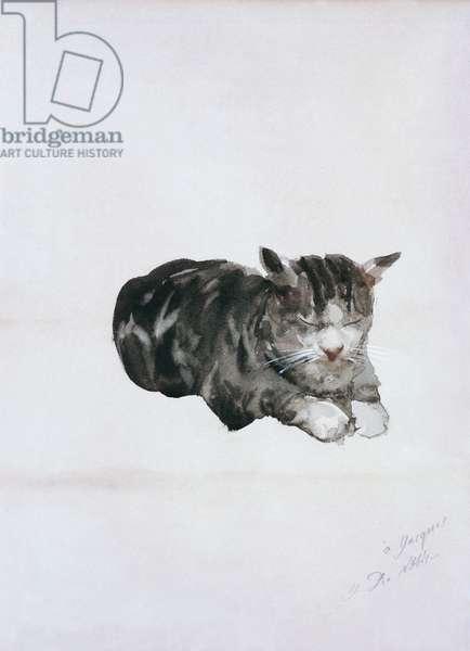 Study of Cat (Studio di gatto), by Giuseppe De Nittis, 1880, 19th Century, watercolor on paper, 33 x 25 cm