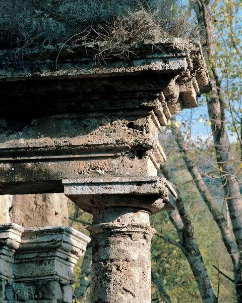 Nymphaeum Column - Genazzano, 1506 - 1510
