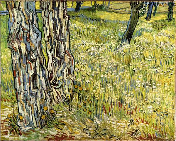 trunks of trees, 1890 (oil on canvas)