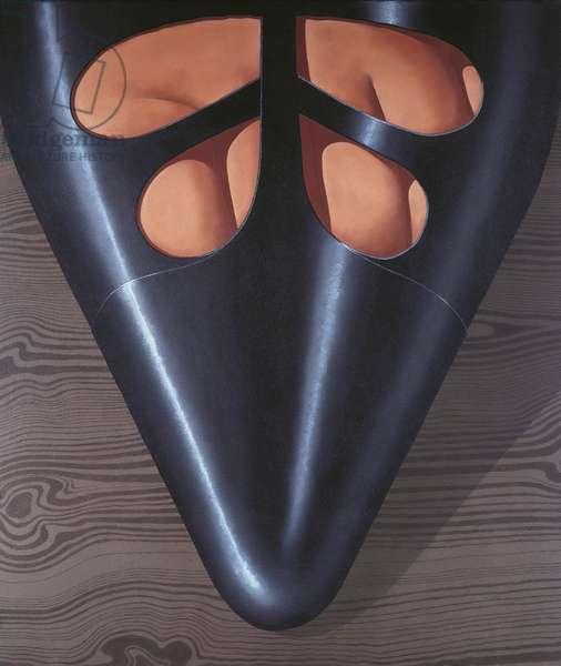 Shoe, by Domenico Gnoli, 1969, 20th Century, mixed media on paper, 131 x 111 cm