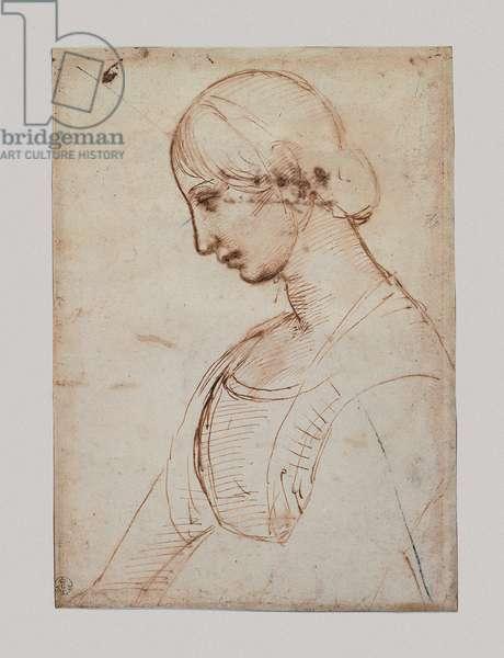 Half-Length Young Woman in Profile, 1483-1520 (pen, black pencil, paper)