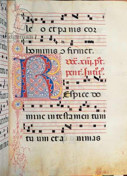 Gradual from Palm Sunday to the XXIV Sunday after Pentecost, (illuminated manuscript)