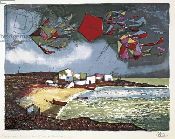 Kites over the Coast