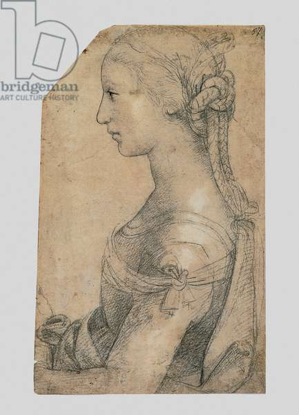 Half-Length Young Woman in Profile, 1483-1520 (stylus, black pencil, pen, paper, white lead)