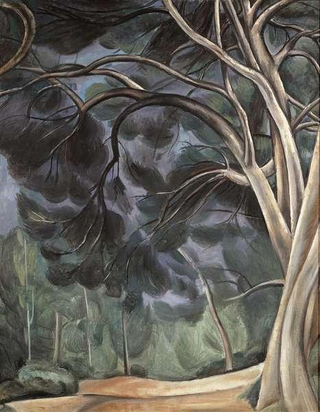 Trees (Tree Trunks), 1912