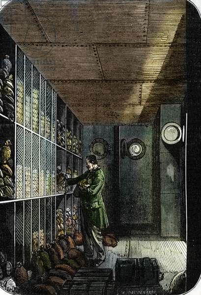 Safe de la Banque de France a Paris (Basement of the Bank of France in Paris) (coloured engraving)