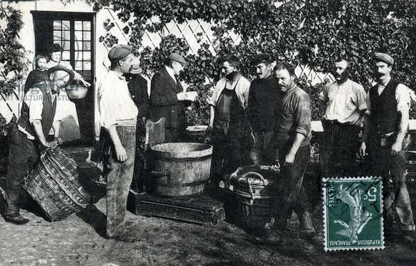 Champagne harvest: the grapes weighing, postcard 1910 Private collection
