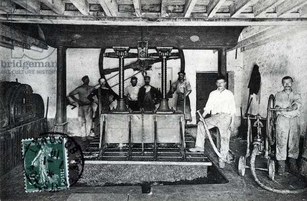 Champagne harvest and manufacture, view of the press (Champagne harvest: grape press) Postcard 1910 Private collection