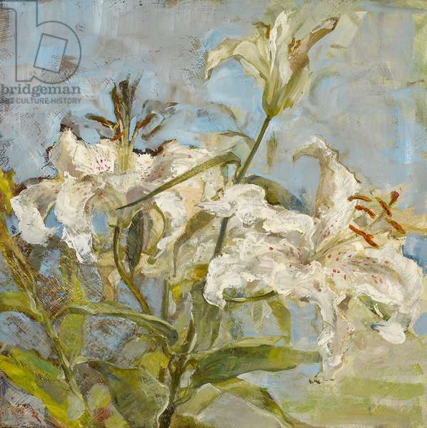 White lilies with stamens, 2005 (oil on panel)