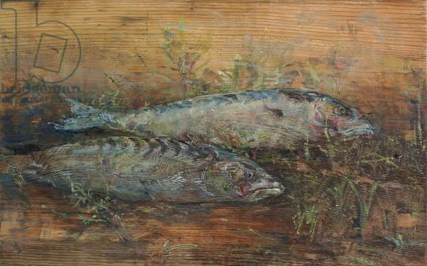 Two Mackerel on Bare Wood, 2009 (oil and tempera on wood)