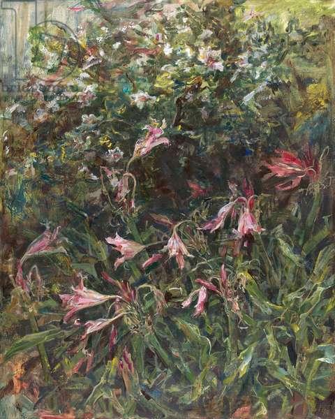 Crinum below Hibiscus, 2014 (oil on panel)