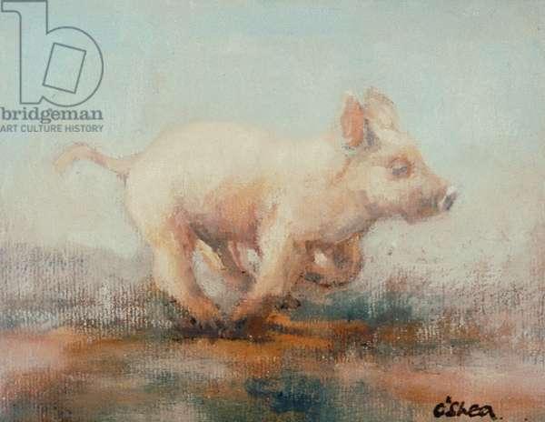 Running Piglet (oil on board)