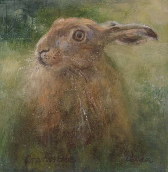 The Hare (oil on board)
