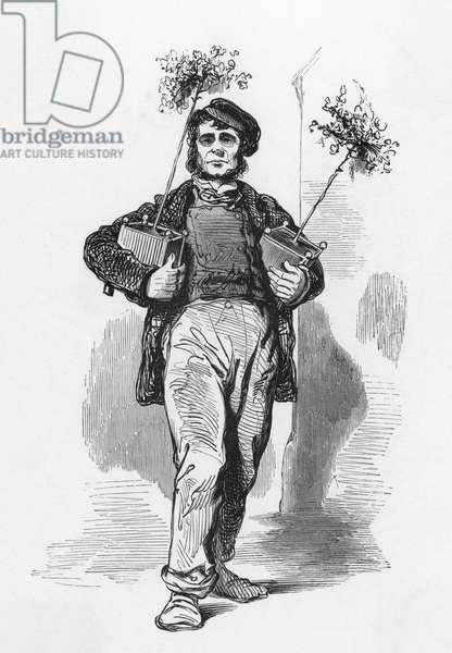 Gardener, Paris c.1860.
