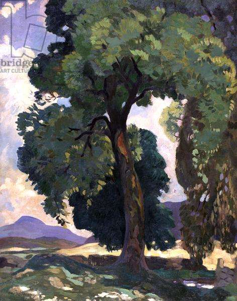 Chesterknowes, c.1919 (oil on canvas)