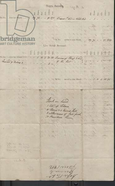 Page from 'Plantations Hope & Experiment Journal' June, 1812 (